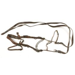 Model 1904 Headstall and Bit