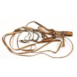 Bridle, Water Bit, and Reins
