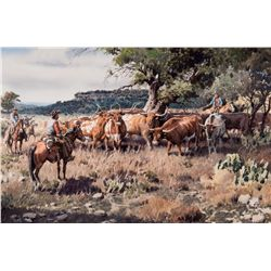 Longhorn in the Hill Country by Boren, James