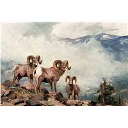 Rocky Mountain Bighorn by Carlson, Ken