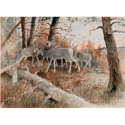 Forest Friends by Russell, Charles M.
