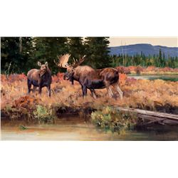 Moose Country by Carlson, Ken