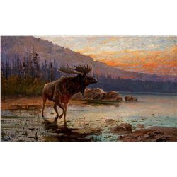 Moose on Jackson Lake by Fery, John