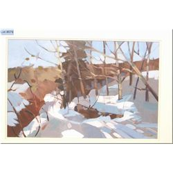 "Framed original mixed media on paper painting ""North Saskatchewan Riverside Path, Edmonton"" by artis"