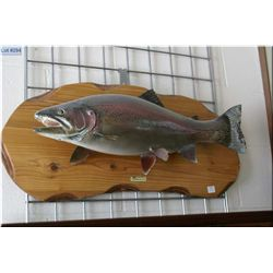 A taxidermy mounted rainbow trout