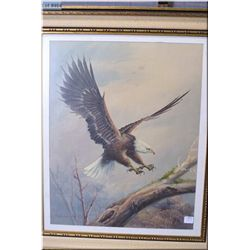 """A framed original oil painting of an Eagle signed by artist Vincent 19"""" X 15 1/2"""""""