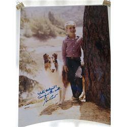 "Jon Provost ""Lassie"" Signed 11x14 Photo"