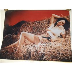 """Jane Russell """"The Outlaw"""" Signed 11x17 Photo"""
