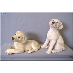 Two sandy cast dogs