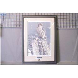 A framed limited edition print  Mountain Monarch-Gyrfalcon  6899/7000 exclusive to Robert Bateman Du