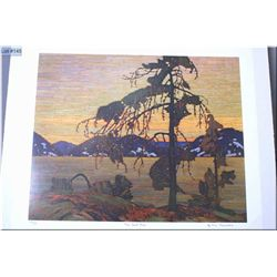 """Unframed limited edition Group of Seven print """"The Jack Pine"""" by Tom Thomson 717/777"""