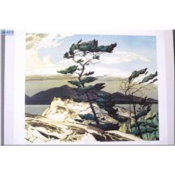 """Unframed limited edition Group of Seven print """"White Pine"""" by A.J. Casson 251/777"""