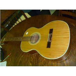 Heit Deluxe Accoustic Guitar