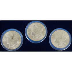 Set of 3 Morgan silver dollars cased and slabbed,