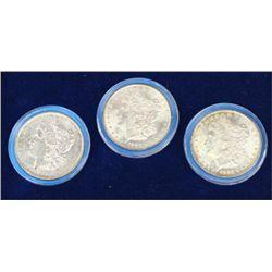 Cased set of 3 Morgan Silver Dollars
