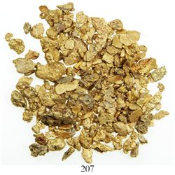 Lot of 77.88 grams of small gold nuggets from a river in the Dominican Republic.