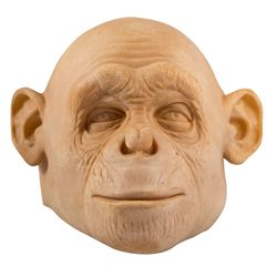 Rick Baker Planet of the Apes (2001) Production Casting Background Chimp Mask