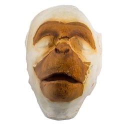 Partial Dr. Zaius Makeup Appliance on Lifecast of Maurice Evans