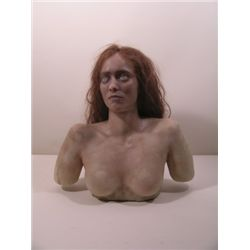 Invasion of the Body Snatchers  Brooke Adams Bust