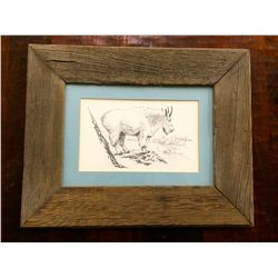 Old wood framed Mountain Goat print
