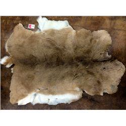Hair-on whitetail deer hide