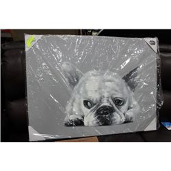 DOG CANVAS PICTURE