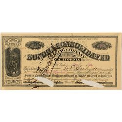 Sonora Cons. Mining Company Stock Certificate 1879