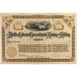 Mollie Gibson Cons. Mining Co. Stock Certificate
