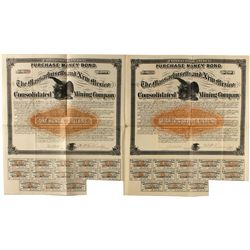 The Massachusetts & New Mexico Cons. Mining Co. $50 Bonds