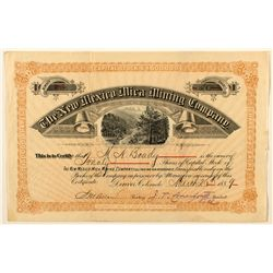 The New Mexico Mica Mining Company Stock Certificate