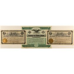 Three Chipmunk Gold Mining Co. of Manhattan Stock Certificates 1906