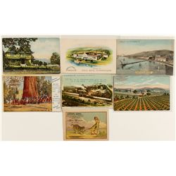 Wine Advertising/Business Postcards