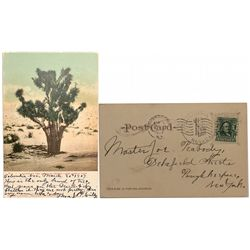 1907 Columbia, Nevada Post Mark on Printed Post Card