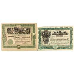 Two Different Certificates from the Tri-Bullion Smelting & Development Co.