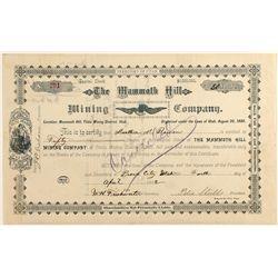 The Mammoth Hill Mining Company Stock