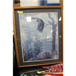 "FRAMED BALD EAGLE PRINT 29"" X 36"""
