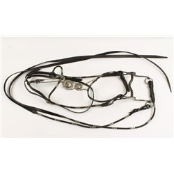 Headstall and Reigns with Silver Accents and