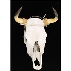 Handcrafted Southwest Steer Head Skull Mount.