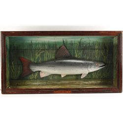 Carved Fish Shadow Box