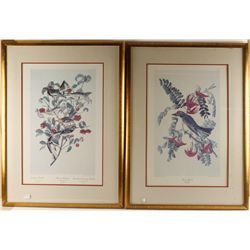 Two Repro Prints of Audubon Bird Paintings