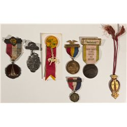 Exposition Badge Collection