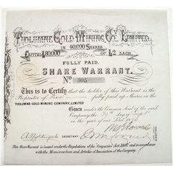 Tuolumne Gold Mining Co. Limited 2 share warrant stock certificate
