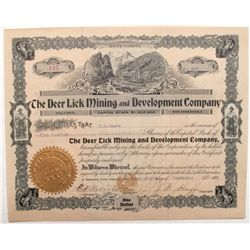 Deer Lick Mining and Development Company Stock Certificate