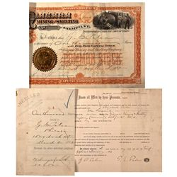 Niagara Mining and Smelting Co. Stock Certificate