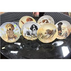 KNOWLES PORCELAIN COLLECTOR DOG PLATES X6