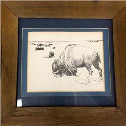 Bison Artwork
