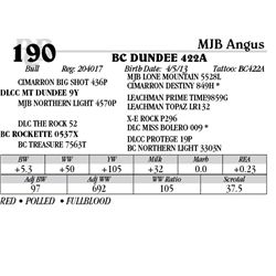 Lot 190 - BC DUNDEE 422A