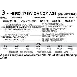 Lot 3 - BRC 175W DANDY A25 {DLF,HYF,IEF}