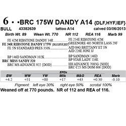 Lot 6 - BRC 175W DANDY A14 {DLF,HYF,IEF}