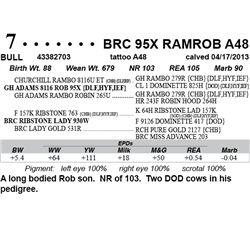 Lot 7 - BRC 95X RAMROB A48